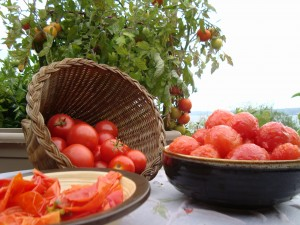 Heirloom Tomatoes for Canning